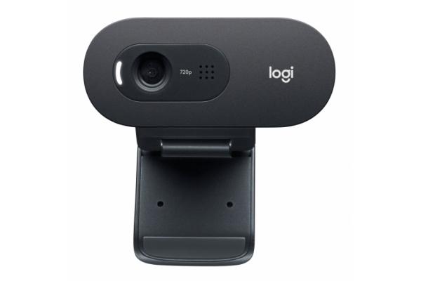 WEBCAM LOGITECH C505E 720P HD NEGRO